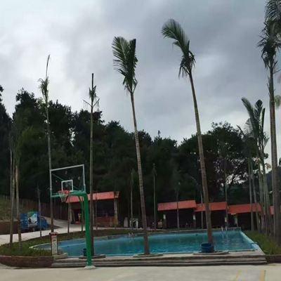 贺州市信都镇水上乐园游泳池