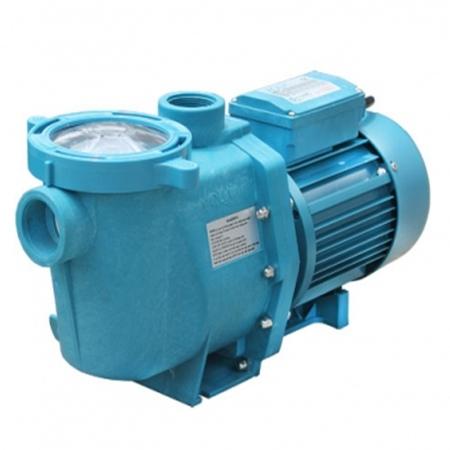 泳池循环水泵 AYS系列